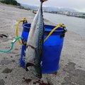 衛星兎@妄想の魔王さんの静岡県富士市での釣果写真