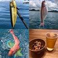 まさしさんの千葉県安房郡での釣果写真