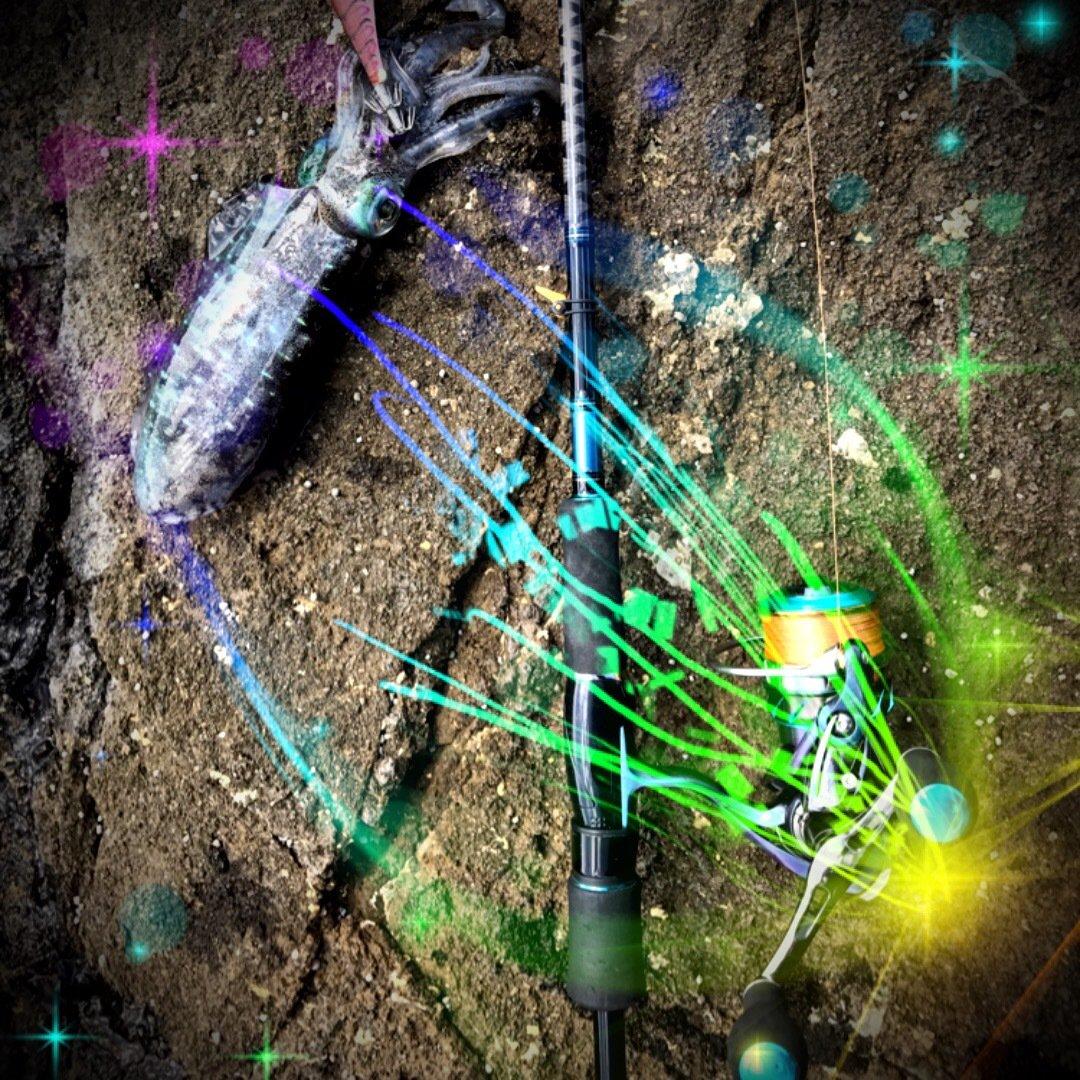対馬の釣師さんの投稿画像,写っている魚は