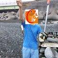 フィッシングボーイEIICHIさんの神奈川県でのゴンズイの釣果写真