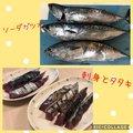Hideyuki Iizukaさんの千葉県での釣果写真