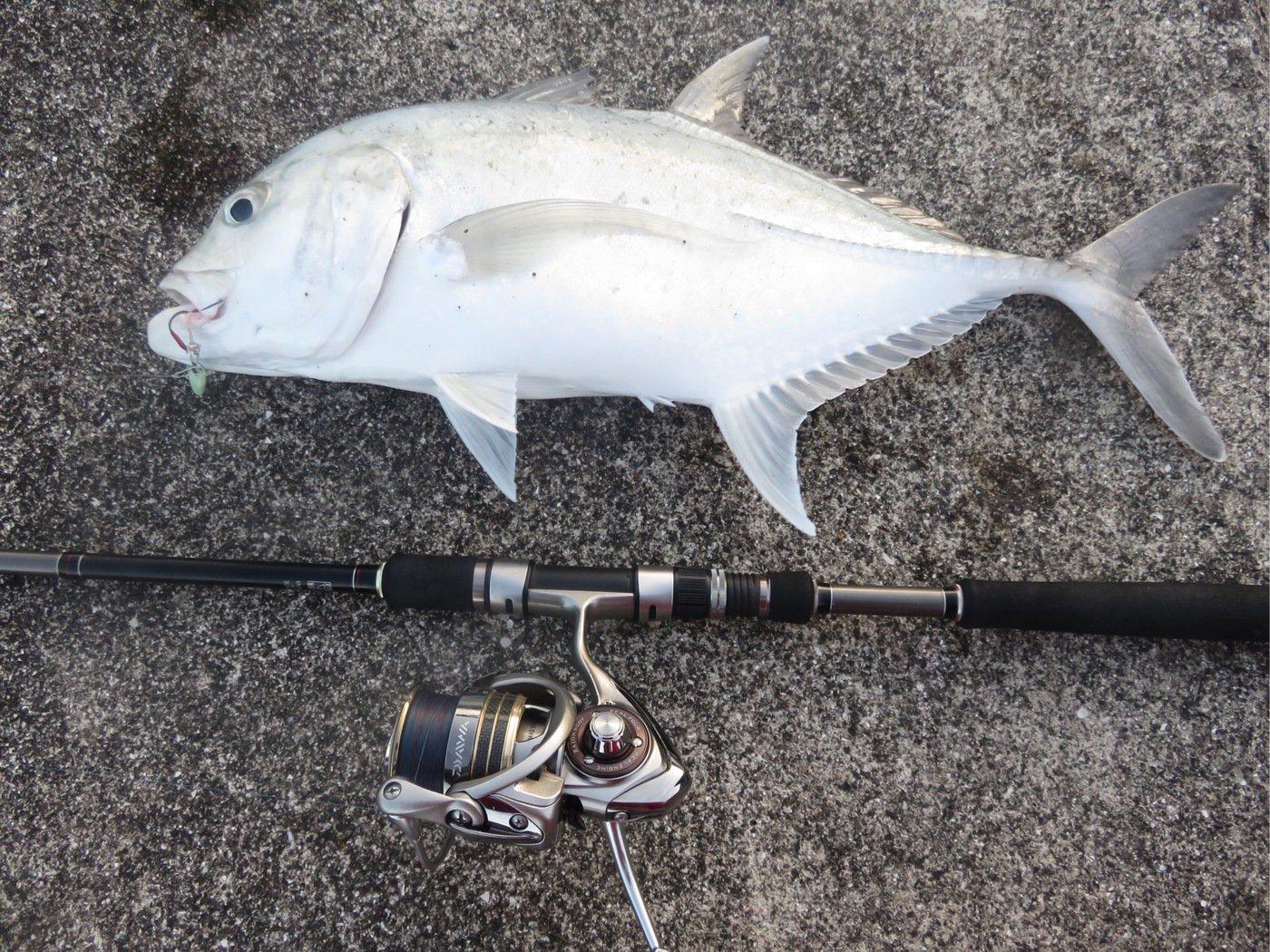 仁科哲洋さんの投稿画像,写っている魚はロウニンアジ