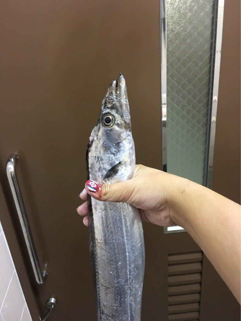 まいこさんの投稿画像,写っている魚は
