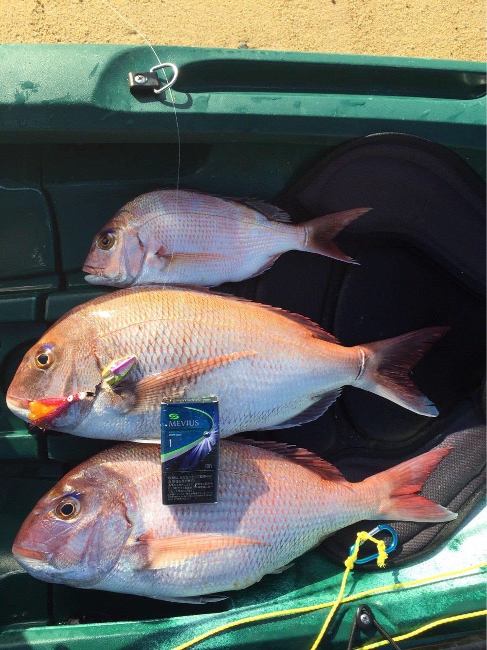 hiroさんの投稿画像,写っている魚は