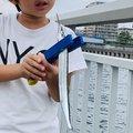 はなぶささんの兵庫県でのサヨリの釣果写真