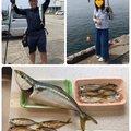 Yoshitaka Itohさんの大阪府泉佐野市でのアジの釣果写真