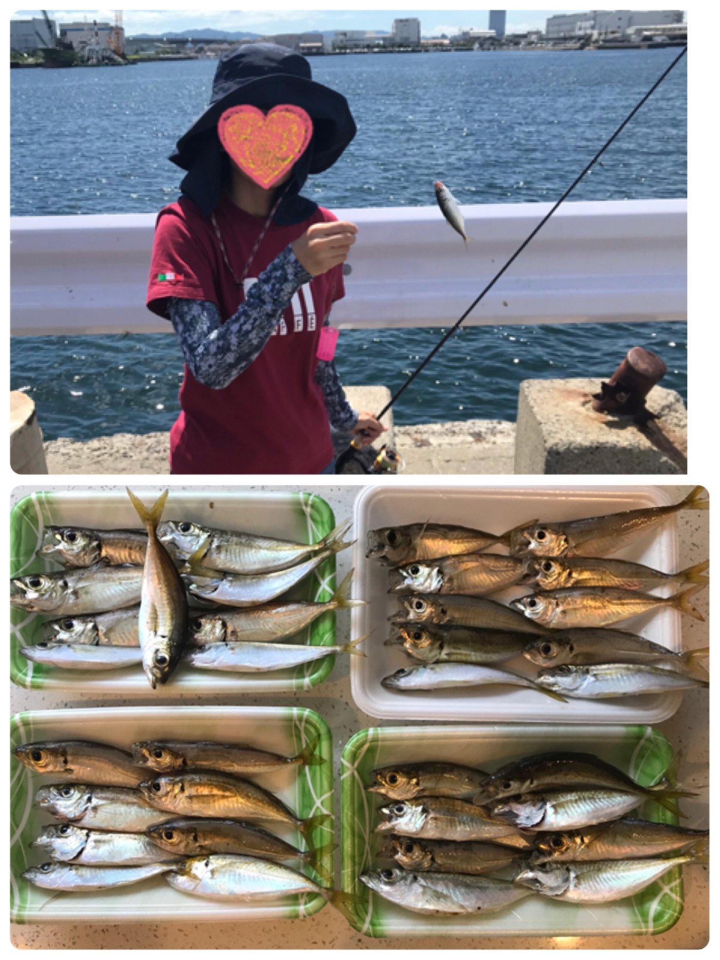 Yoshitaka Itohさんの投稿画像,写っている魚はアジ