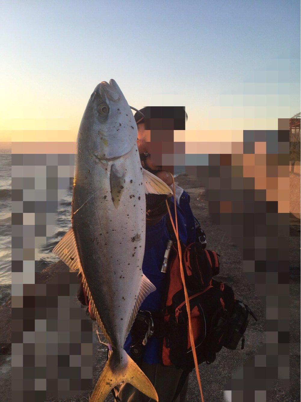 ゲン3さんの投稿画像,写っている魚はブリ