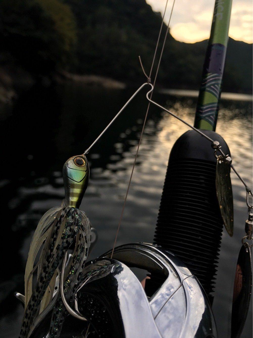 ジグ太郎さんの投稿画像,写っている魚はブラックバス