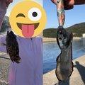 エギング初心者🔰さんの兵庫県たつの市での釣果写真