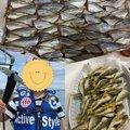 ビギにゃーさんの青森県での釣果写真