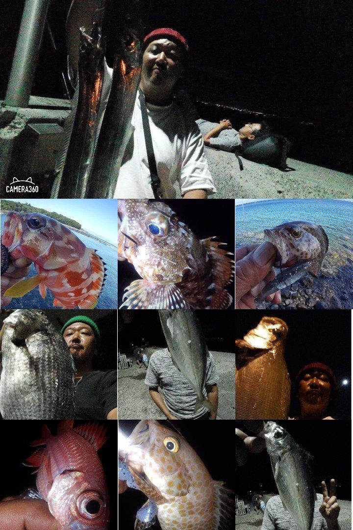 KRO さんの投稿画像,写っている魚はカサゴ,ヒラスズキ,オオモンハタ,アカハタ,クロダイ