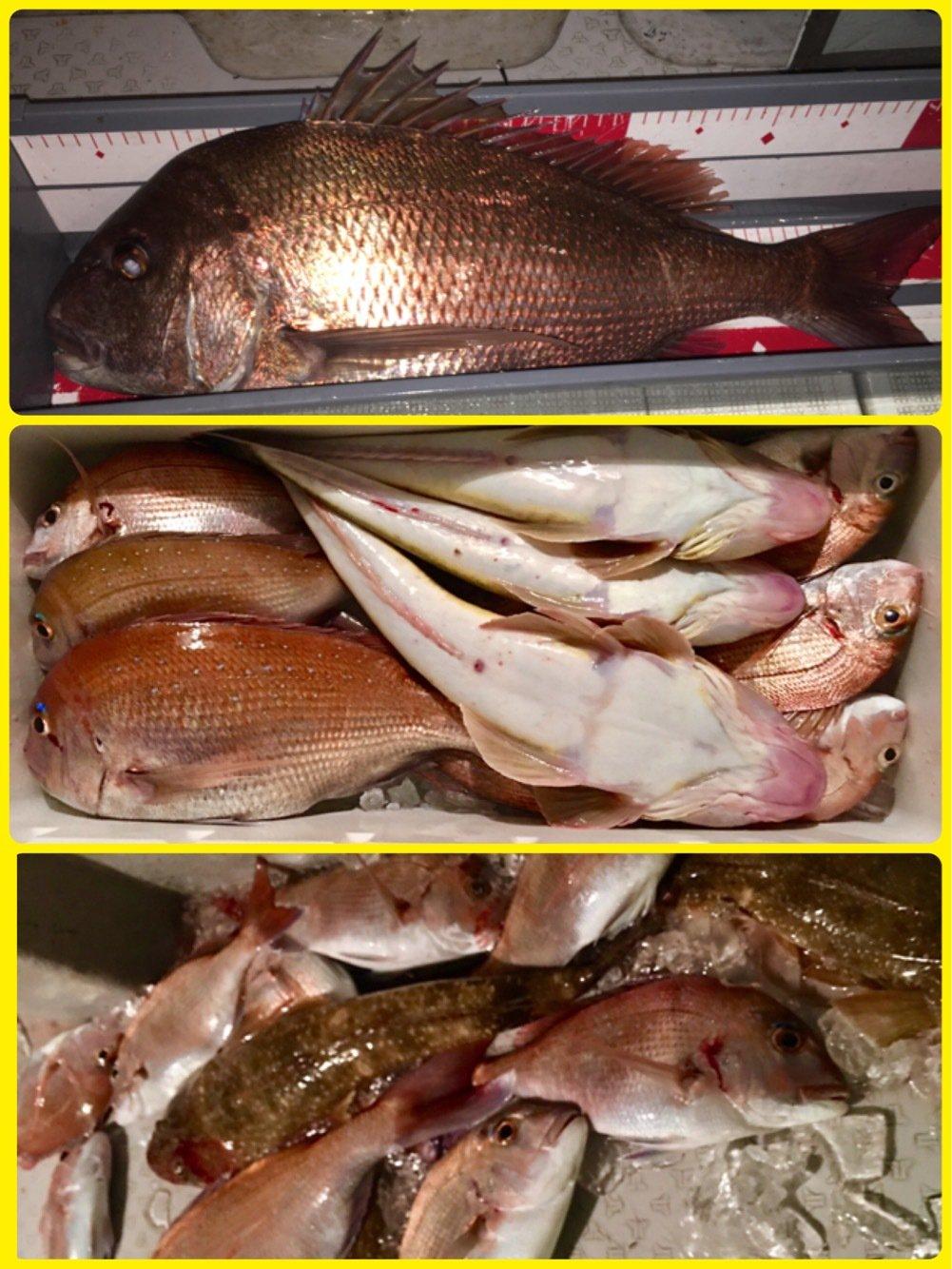 kiyosakuさんの投稿画像,写っている魚はマダイ