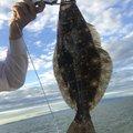 combさんの大阪府でのヒラメの釣果写真