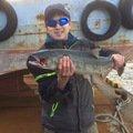 パパちゃんさんの北海道目梨郡でのサケの釣果写真