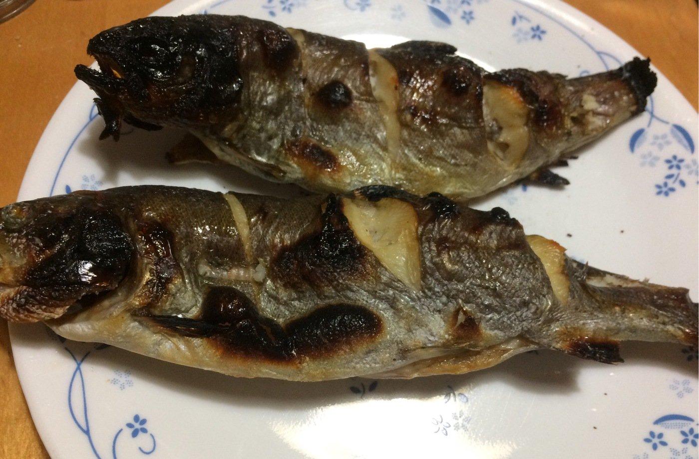Johnnyさんの投稿画像,写っている魚はニジマス