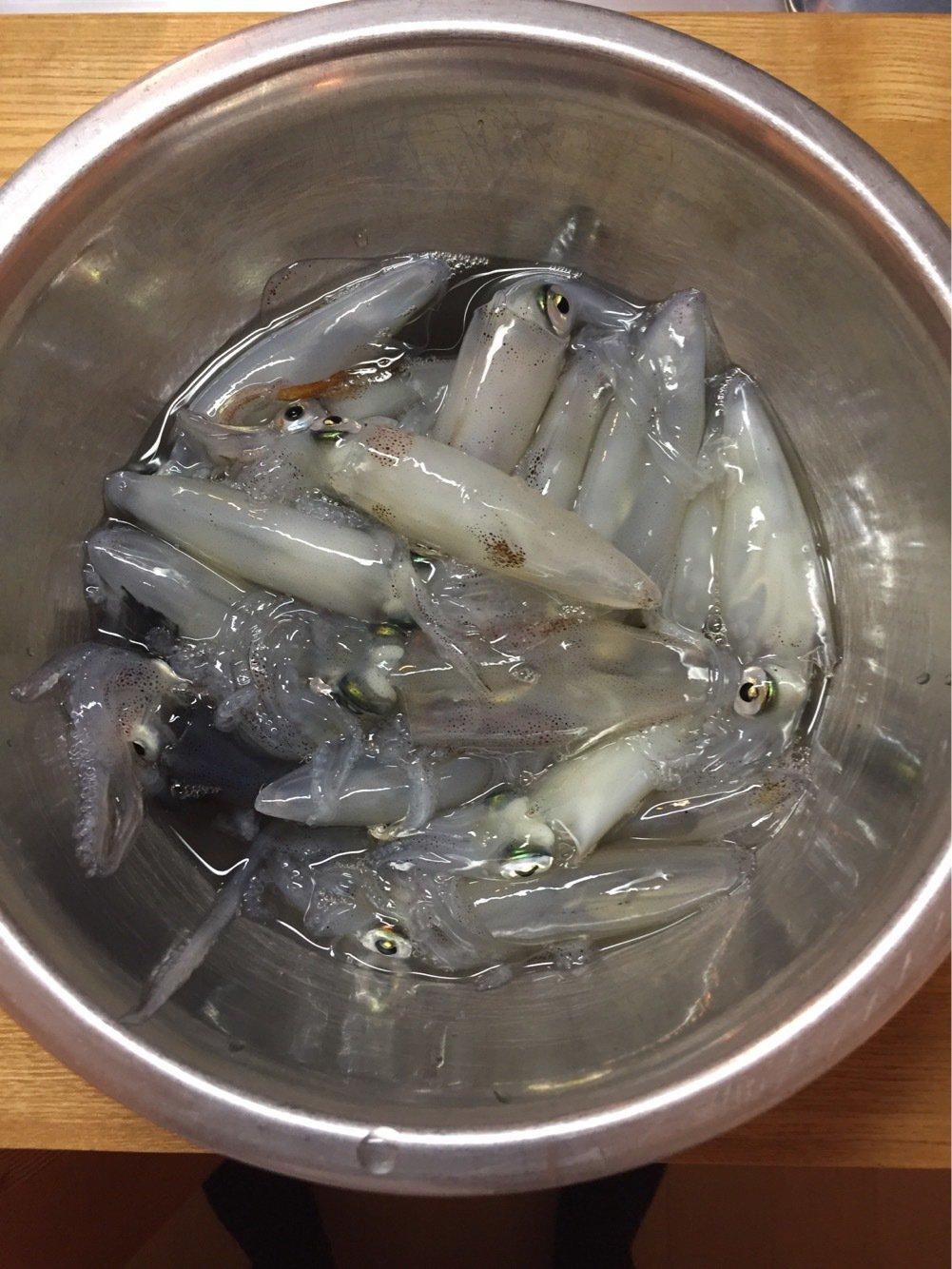 makashiさんの投稿画像,写っている魚はジンドウイカ