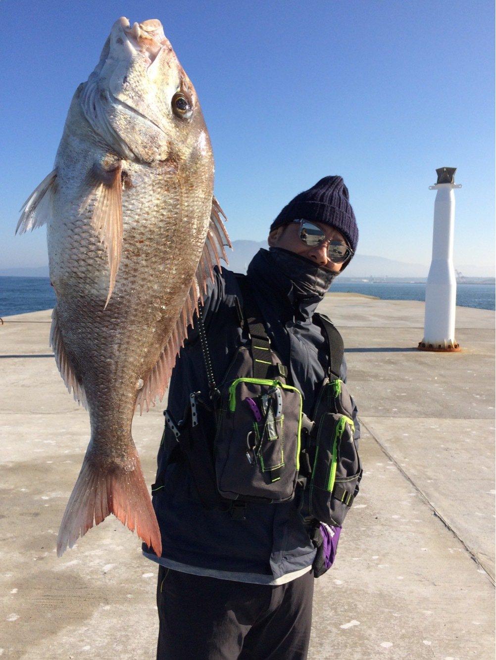 gonzuimaniacさんの投稿画像,写っている魚はマダイ