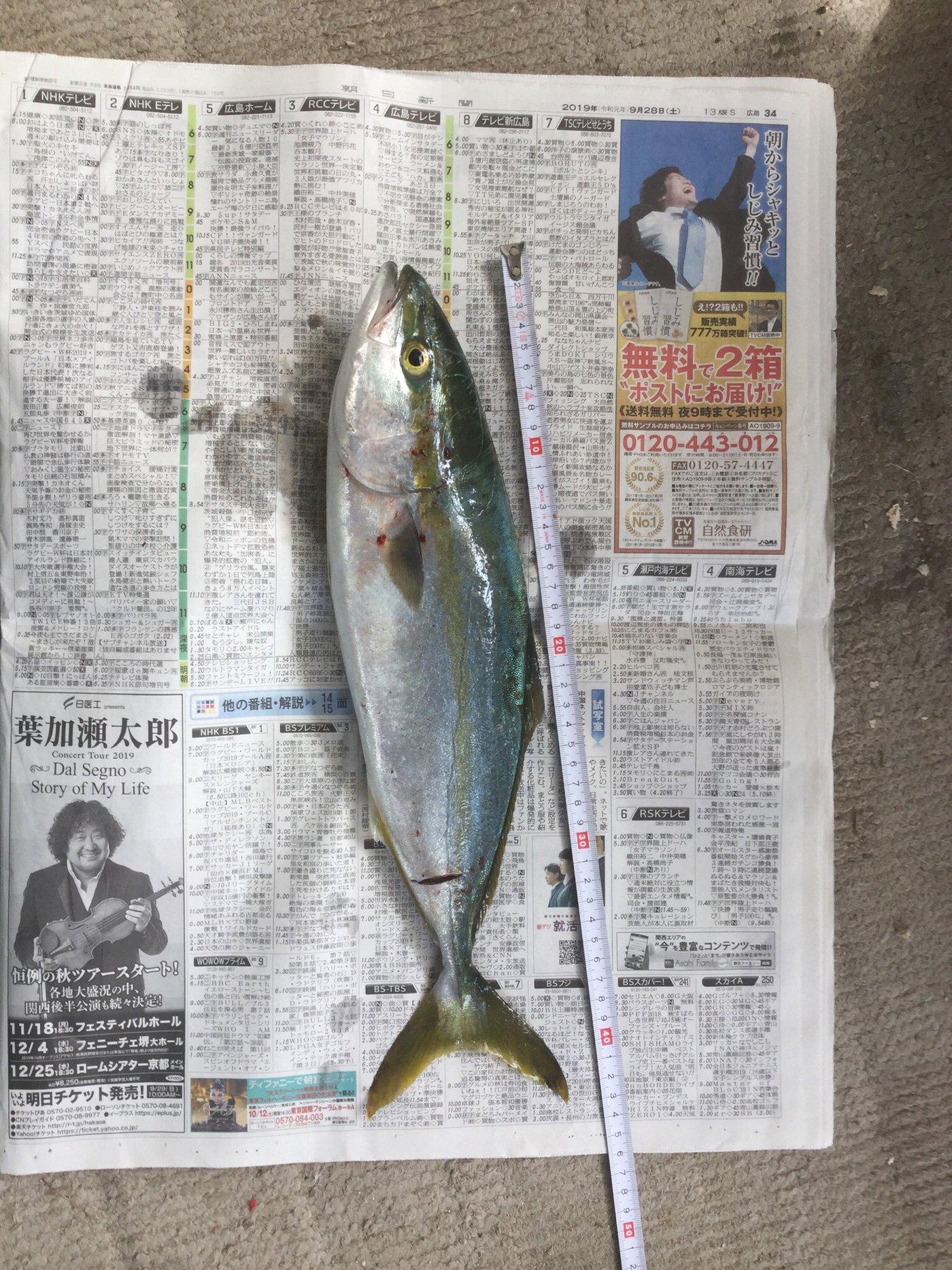 東行拓さんの投稿画像,写っている魚は