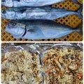 ☆*:真鯛中毒*:☆さんの群馬県沼田市での釣果写真