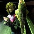 健斗さんの鹿児島県いちき串木野市での釣果写真