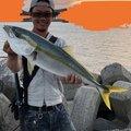 あきさんの山口県下関市での釣果写真