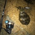 オッスさんの岡山県での釣果写真