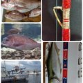 ☆*:真鯛中毒*:☆さんの群馬県での釣果写真