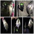 健斗さんの鹿児島県薩摩川内市でのクロダイの釣果写真