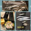 あーさんの新潟県柏崎市での釣果写真