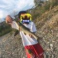 サバフさんの高知県高知市での釣果写真