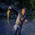 CCBさんのナマズの釣果写真