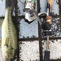 hide7さんの福岡県大野城市での釣果写真