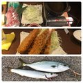 Mochonceliさんの千葉県習志野市でのカマスの釣果写真