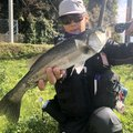 HAYAさんの島根県での釣果写真