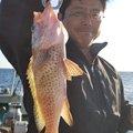 ポリンキーさんの三重県での釣果写真