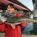 nippyさんの愛知県での釣果写真