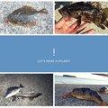 まさてぃせっつさんの愛知県でのタケノコメバルの釣果写真