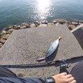 HiroHanaFishingさんの岡山県瀬戸内市での釣果写真