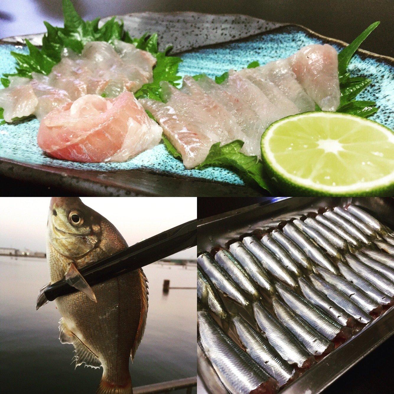 よしなり〜さんの投稿画像,写っている魚はアオタナゴ