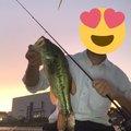 りょうすけさんの宮崎県での釣果写真