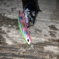 ぼちぼちさんの千葉県でのタチウオの釣果写真