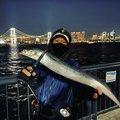 大地さんの埼玉県でのタチウオの釣果写真