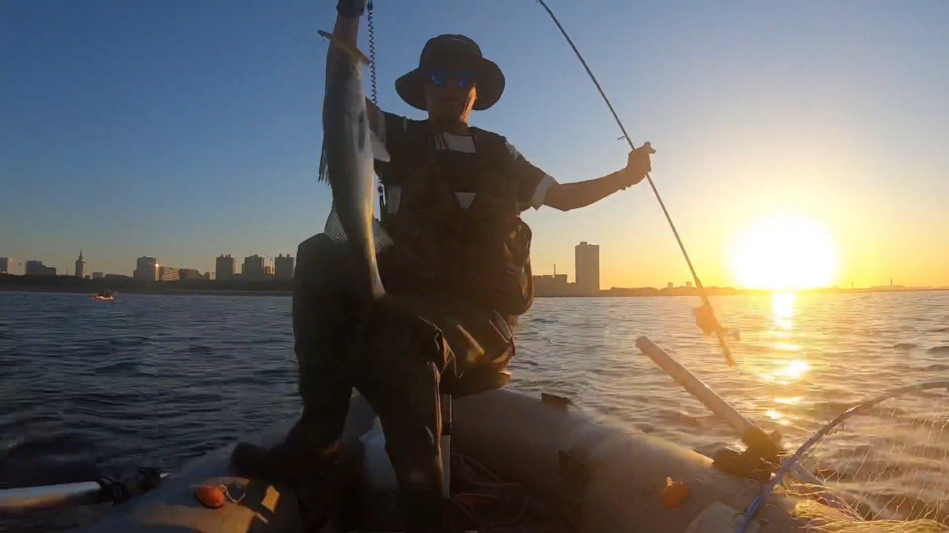マコトマンさんの投稿画像,写っている魚はスズキ