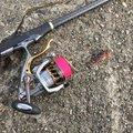とあるアングラーさんの和歌山県での釣果写真