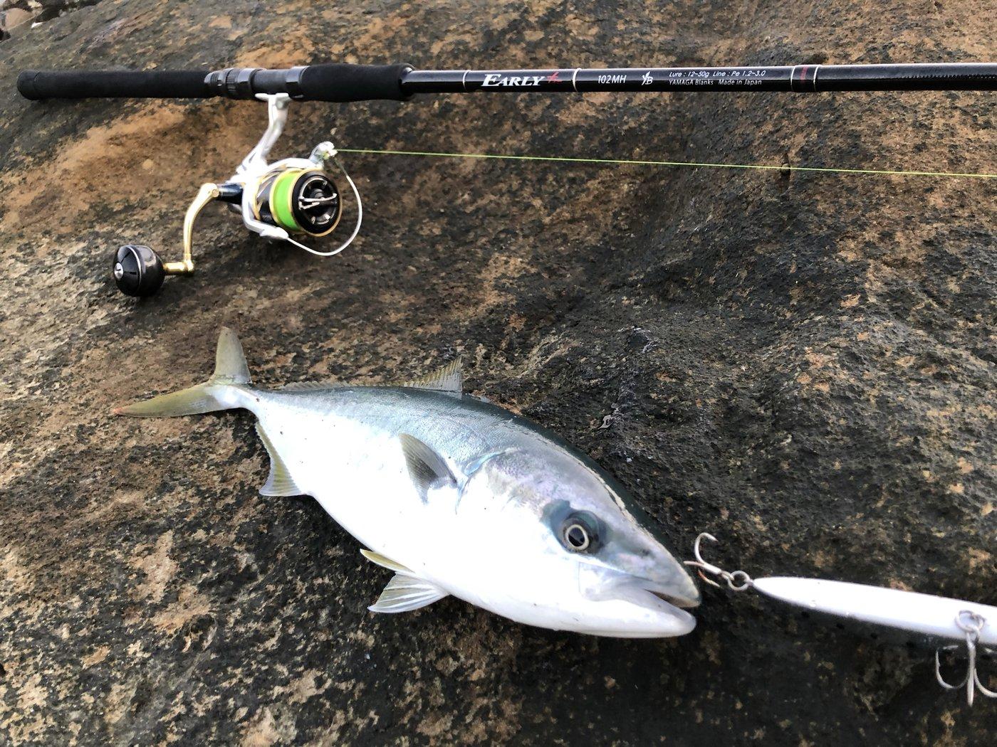釣人Aさんの投稿画像