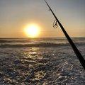 釣り好き 一平さんの宮城県仙台市での釣果写真