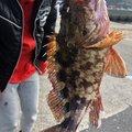 DSK☆45さんの佐賀県での釣果写真