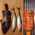 山下卓也さんの青森県八戸市での釣果写真