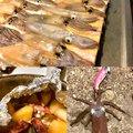 テラざわすさんのジンドウイカの釣果写真